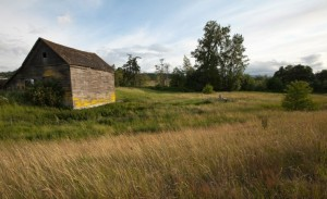 An abandoned old house sits on a green and golden field.