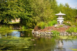 A fountain sits beside a pond dotted with fishing ducks