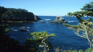 Rocky shoreline and deep blue waters of Cape Flattery